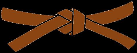 Judo Belt, 1st Kyu, brown