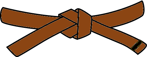 Youth Judo Belt, 3rd Kyu, brown with 1 black tab