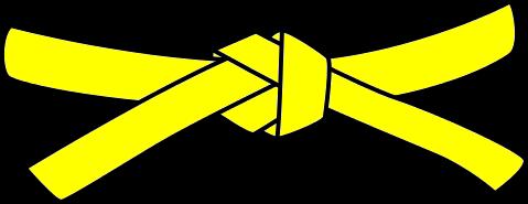 Junior Judo Belt, 5th Kyu, yellow